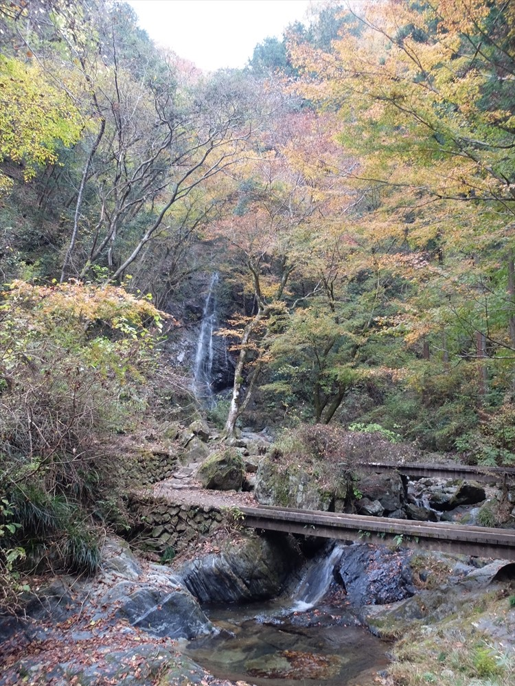 払沢の滝 檜原村 リトリート