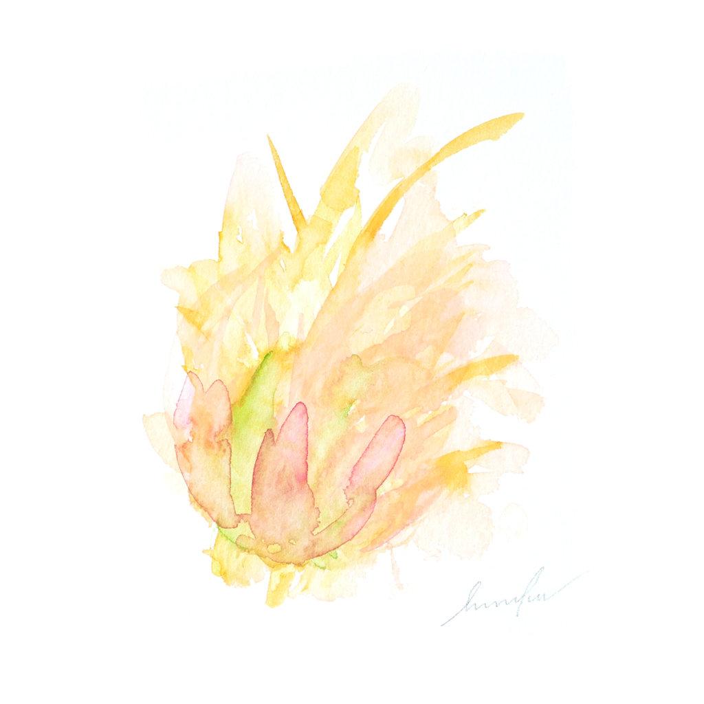 春 ~花々はお日さまと語らう~