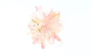 【今日のソウルアート】日本の春 -Inner Peace-