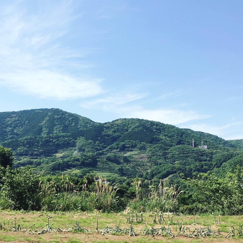 シンギング・リン 秦野市 横浜 新宿 渋谷 東京 湘南
